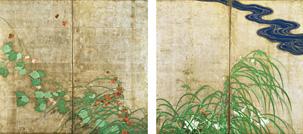 20060808natsuakikusa.jpg